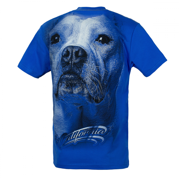 Pit Bull Koszulka CALIFORNIA DOG Niebieska